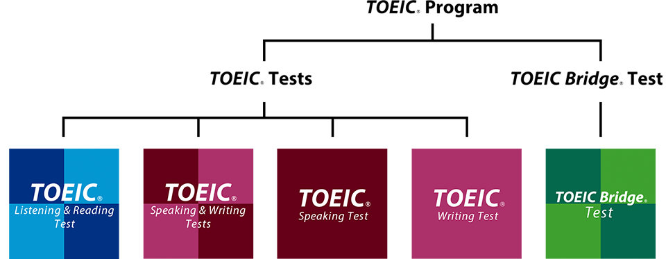 https://www.iibc-global.org/library/default/toeic/toeic_program/img/toeic_program_img05.png
